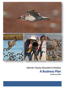 business-plan-tn